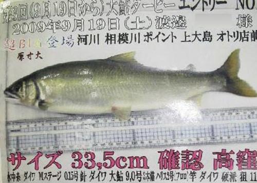 Sagamiya_09