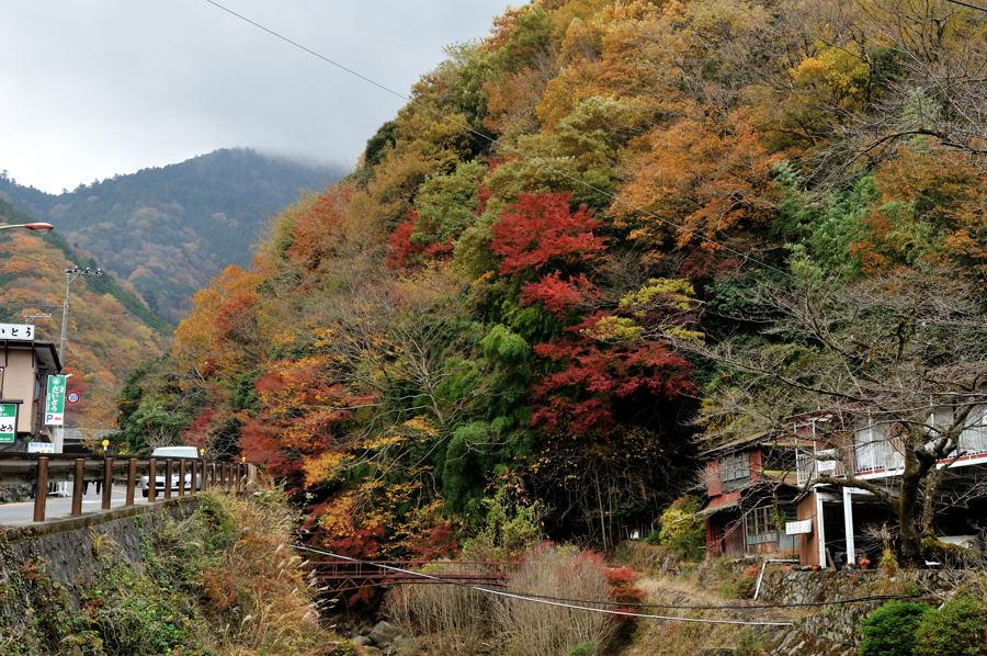 Ooyama_ike_07